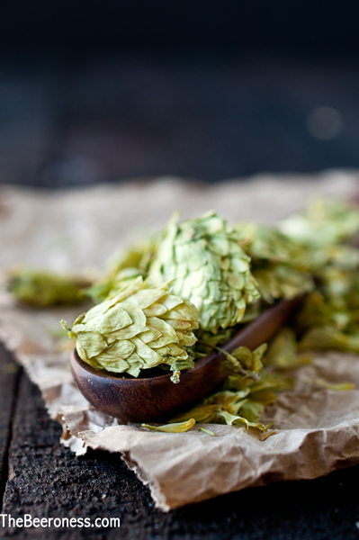 Craft Beer 101: What are hops? via @TheBeeroness