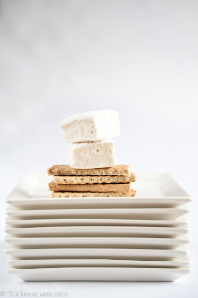 Beer Marshmallows with Mint Chocolate Stout Sauce